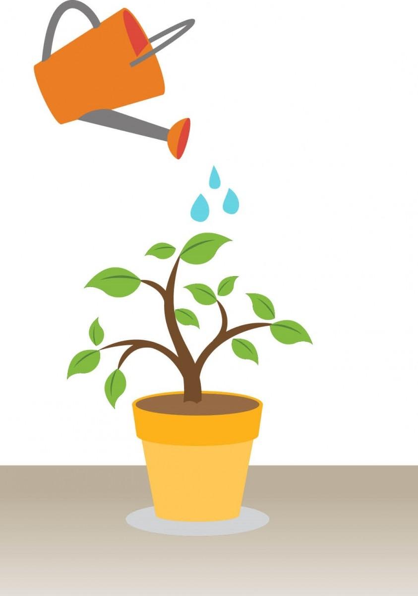 Plants_graphic