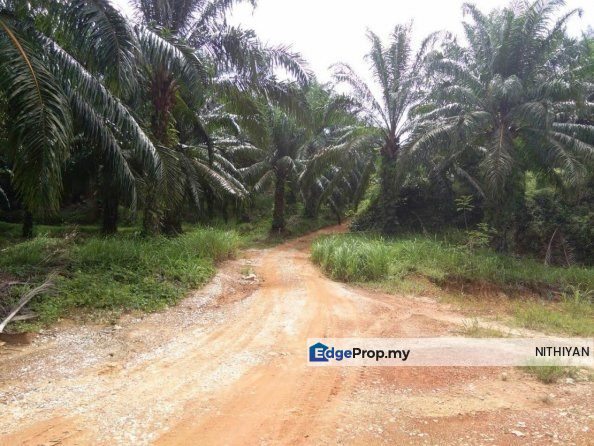 Baling Kedah, Kedah, Baling