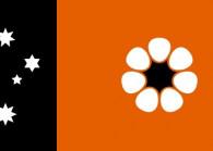 ntflag_2.jpg